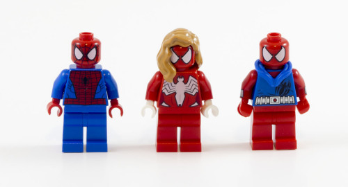 76057-the-spiders