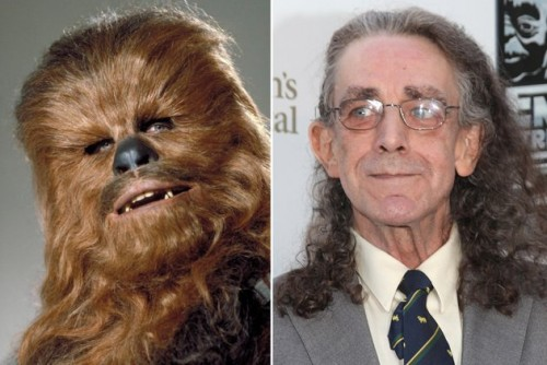 Peter-Mayhew-–-Chewbacca-While-working-as-a-hospital-orderly-in-London-the-7-foor-3_-When-Mayhew-attended-a-casting-call-for-Star-Wars-he-got-the-job-the-mo
