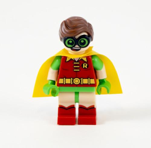70905-robin